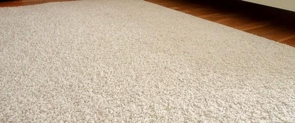 Profesjonalne czyszczenie dywanów - Szczecin